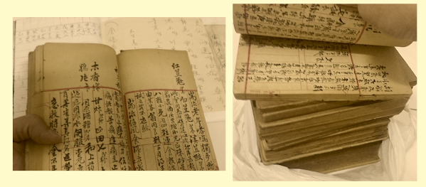 The Hiews' ancient old herbal manuscripts